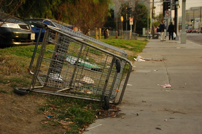 Shopping Cart on Sepulveda January 10, 2007