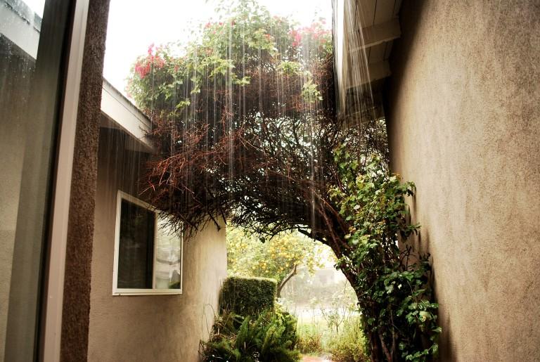 Front Door Rain