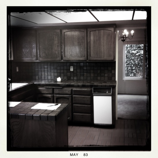Kitchen: 6606 Lasaine Av.