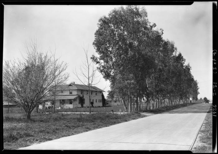 Wagner_Thoreson_scenes_at_Van_Nuys_Los_Angeles_CA_1926_image_3