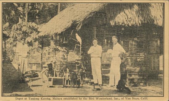 Malaya:Van Nuys