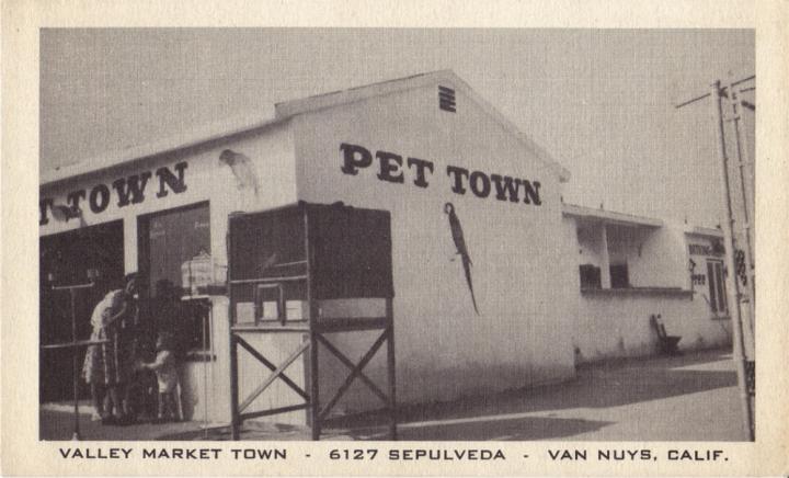 Valley Market Town (SFV Blog)