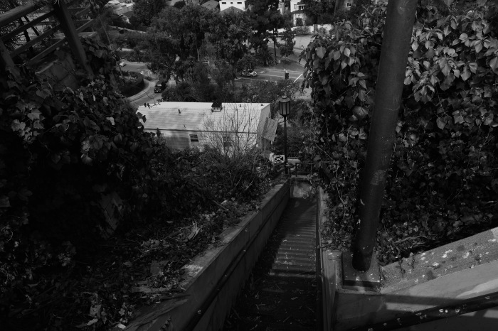 Stairs at Santa Monica, Adelaide Dr.